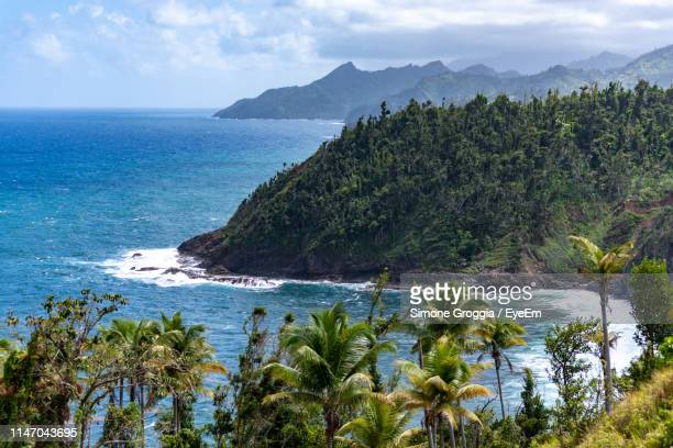 scenic view of sea against sky - dominica stock pictures, royalty-free photos & images