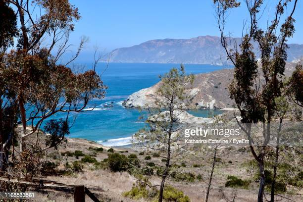 scenic view of sea against sky - catalina island stock photos and pictures