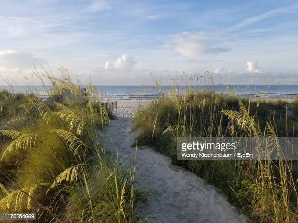 scenic view of sea against sky - south carolina stock pictures, royalty-free photos & images