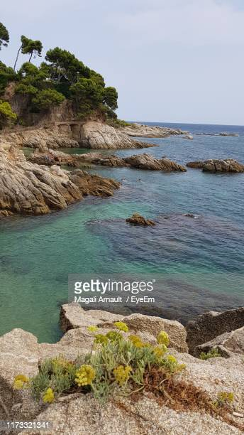 scenic view of sea against sky - arnault stock pictures, royalty-free photos & images