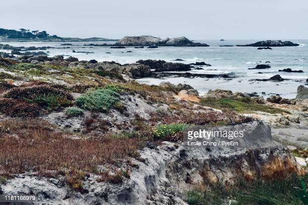 scenic view of sea against sky - monterey peninsula stock pictures, royalty-free photos & images