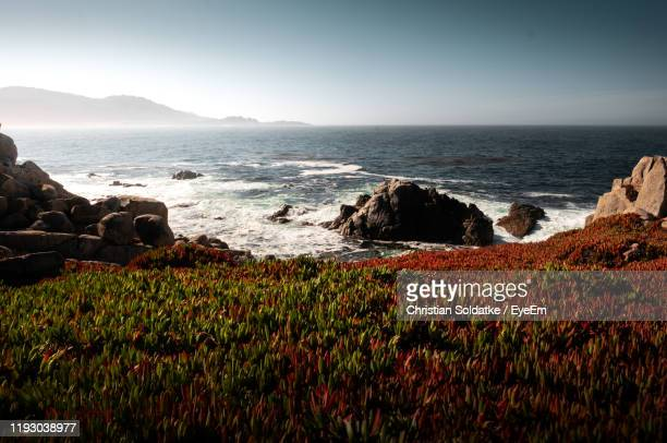 scenic view of sea against sky - christian soldatke foto e immagini stock