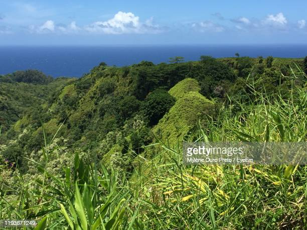 scenic view of sea against sky - preto stock pictures, royalty-free photos & images