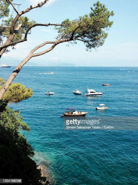 scenic view of sea against sky - portofino stock pictures, royalty-free photos & images