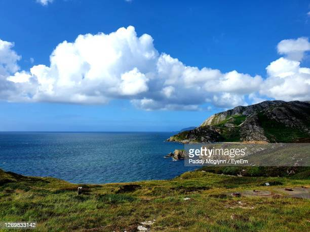 scenic view of sea against sky - tree stock pictures, royalty-free photos & images