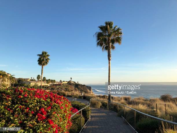 scenic view of sea against sky - pismo beach stock pictures, royalty-free photos & images