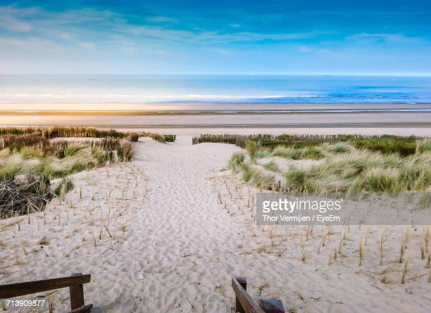 scenic view of sea against sky - belgium stock pictures, royalty-free photos & images