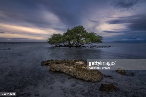scenic view of sea against sky - ade rizal stock photos and pictures
