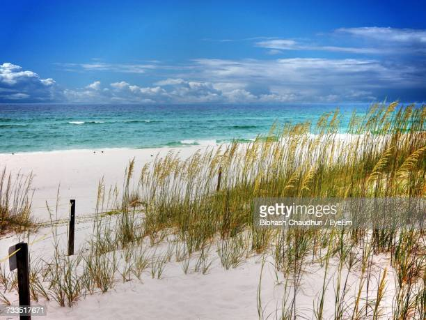 scenic view of sea against sky - destin beach stock pictures, royalty-free photos & images