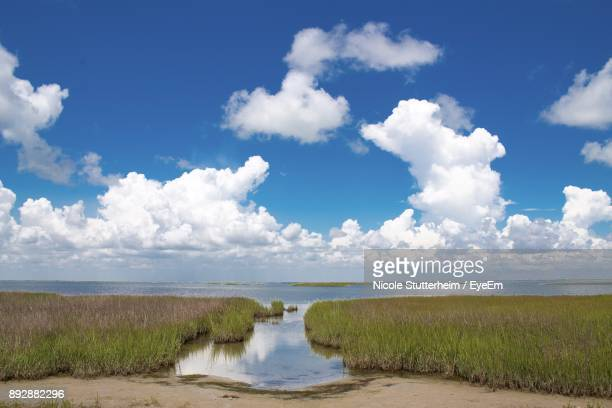 scenic view of sea against sky - stutterheim stock photos and pictures