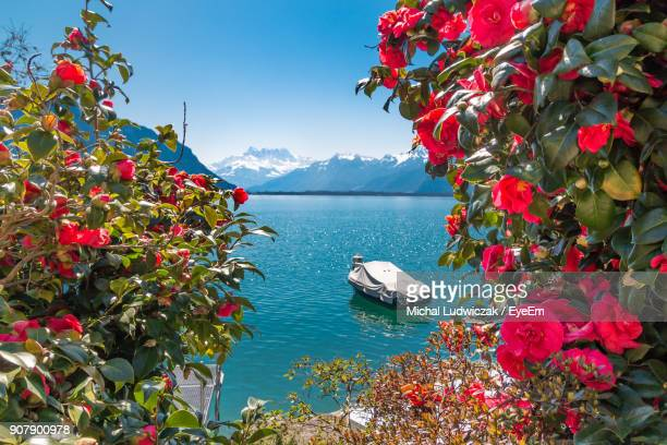 scenic view of sea against sky - vaud canton stock photos and pictures