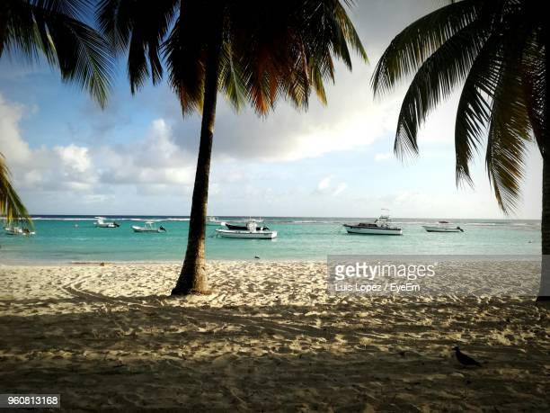 scenic view of sea against sky - bridgetown barbados stock photos and pictures
