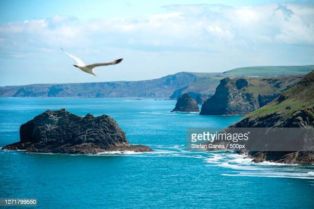 scenic view of sea against sky, truro, united kingdom - truro cornwall stock pictures, royalty-free photos & images