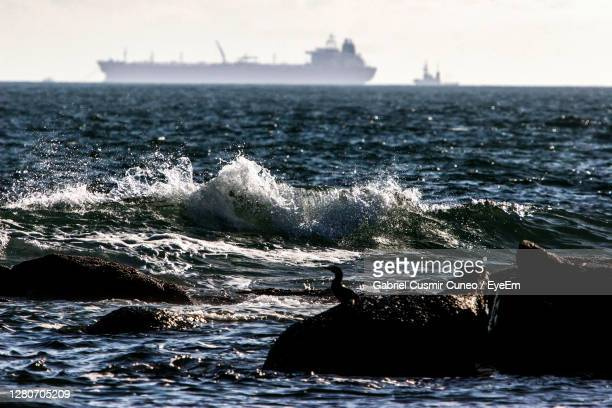 scenic view of sea against sky with bird and ship - uruguay stock pictures, royalty-free photos & images