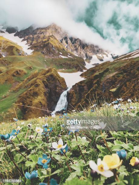 scenic view of sea and mountains against sky - shimla stock pictures, royalty-free photos & images