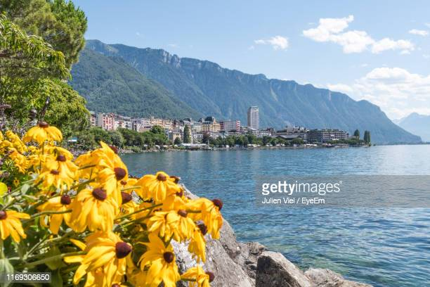 scenic view of sea and mountains against sky - montreux stock pictures, royalty-free photos & images