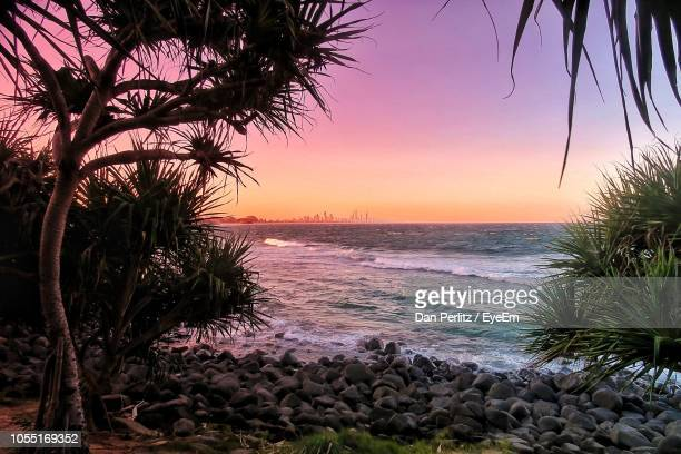 scenic view of sea during sunset - queensland stock-fotos und bilder