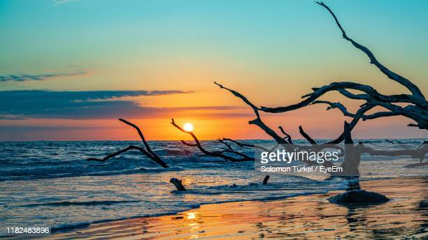 scenic view of sea during sunset - solomon turkel stock pictures, royalty-free photos & images