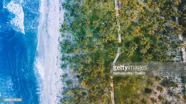 scenic view of sea - latin america stock pictures, royalty-free photos & images