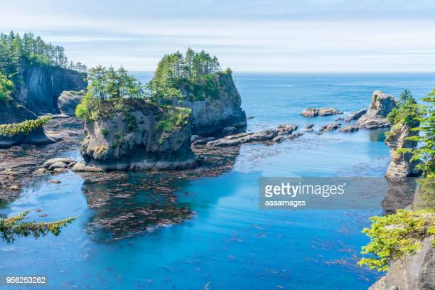 scenic view of seascape in olympic national park - olympic park stock pictures, royalty-free photos & images