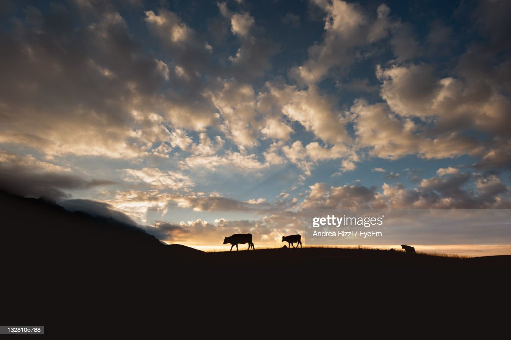 Scenic View Of Silhouette Landscape Against Sky During Sunrise : Foto stock