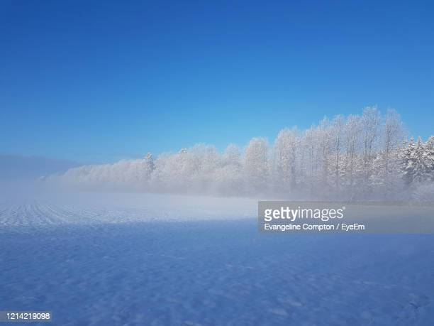 scenic view of snow against clear blue sky - forrest compton stock pictures, royalty-free photos & images