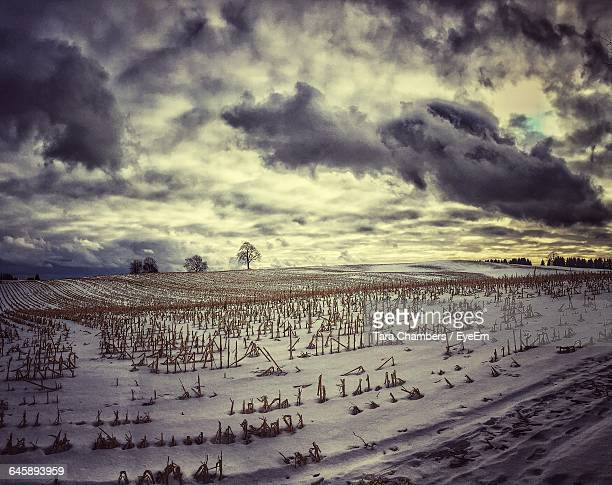 Scenic View Of Snow Covered Field Against Cloudy Sky At Dusk