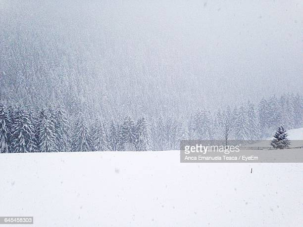 Scenic View Of Snow Covered Field Against Mountain
