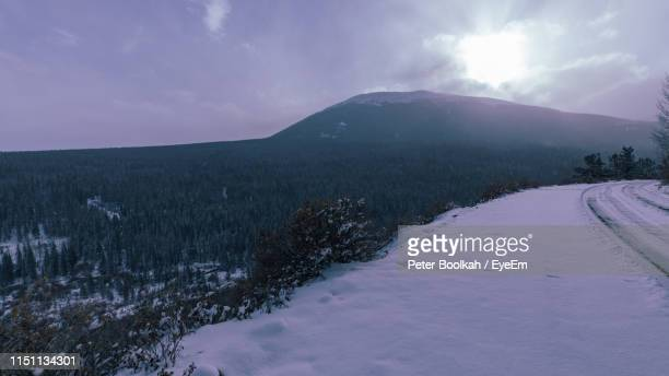 scenic view of snow covered field against sky - peter snow stock pictures, royalty-free photos & images