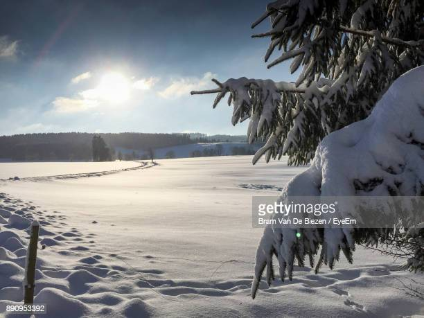 scenic view of snow covered field during sunset - ヴィンターベルク ストックフォトと画像
