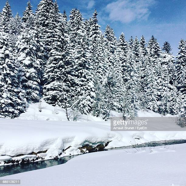 scenic view of snow covered field - arnault stock pictures, royalty-free photos & images