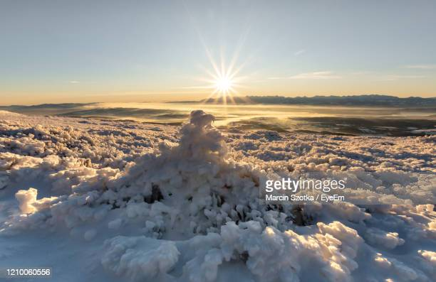 scenic view of snow covered land against sky during sunset - babia góra mountain stock pictures, royalty-free photos & images