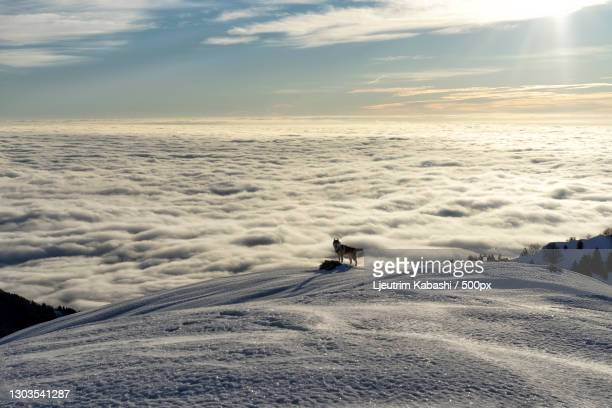 scenic view of snow covered land against sky,monte grappa,pieve del grappa,treviso,italy - treviso italy stock pictures, royalty-free photos & images