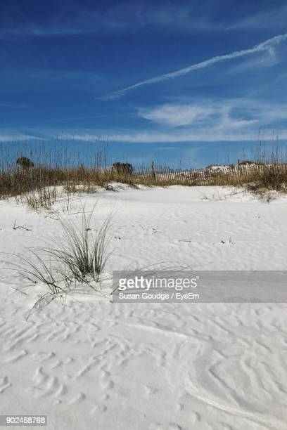 scenic view of snow covered landscape against blue sky - destin beach stock pictures, royalty-free photos & images