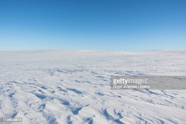 scenic view of snow covered landscape against clear blue sky - tundra stock pictures, royalty-free photos & images