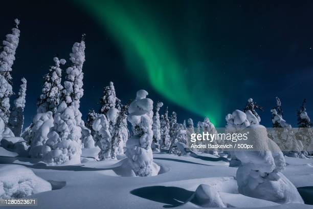scenic view of snow covered landscape against sky at night, russia - 北 ストックフォトと画像