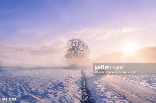 Scenic View Of Snow Covered Road At Sunrise