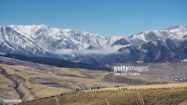 scenic view of snowcapped mountains against sky - pinaceae stock pictures, royalty-free photos & images