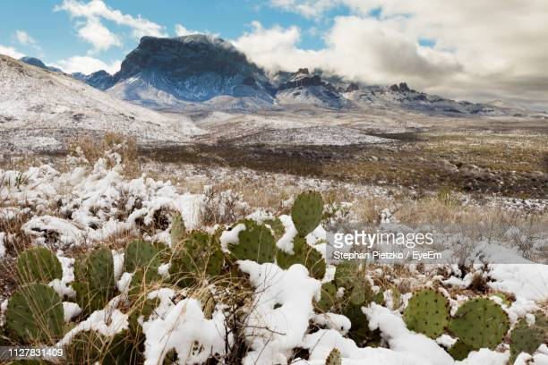 scenic view of snowcapped mountains against sky - chisos mountains stock pictures, royalty-free photos & images