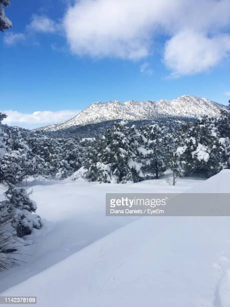 scenic view of snowcapped mountains against sky - diana daniels stock-fotos und bilder