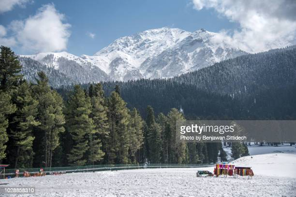 scenic view of snowcapped mountains and pine wood in winter of pahalgam, jammu and kashmir, india - kashmir valley stock pictures, royalty-free photos & images