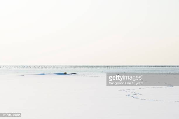 scenic view of snowed beach against clear sky during winter - gwangju stock pictures, royalty-free photos & images