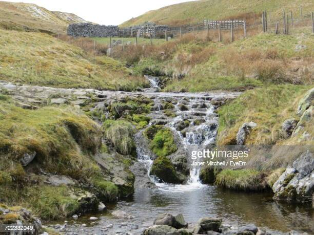 scenic view of stream amidst trees on landscape - brook mitchell stock pictures, royalty-free photos & images