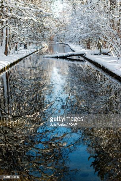 Scenic view of stream during winter
