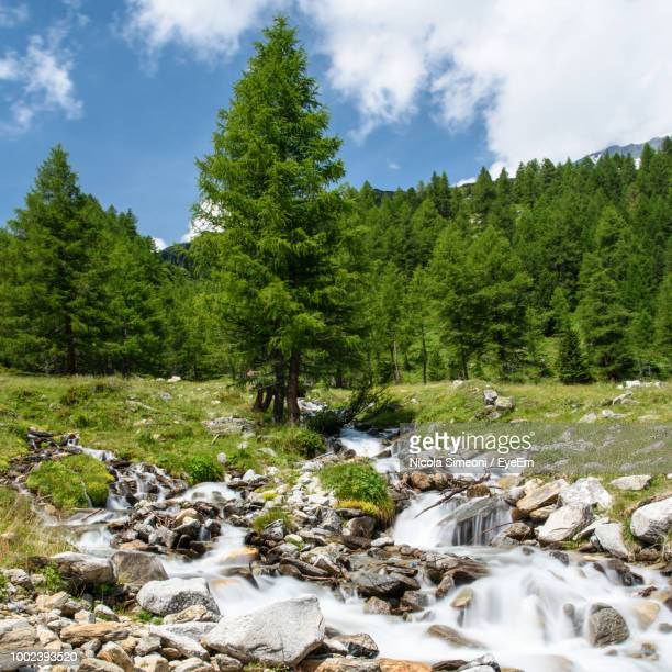 Scenic View Of Stream Flowing Through Rocks In Forest Against Sky