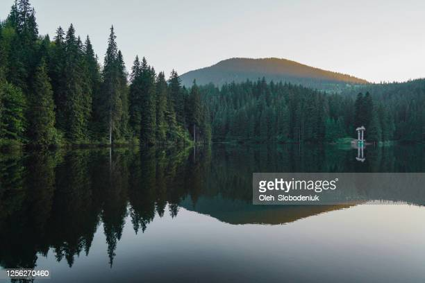 scenic view of synevir lake in mountains - ukraine landscape stock pictures, royalty-free photos & images