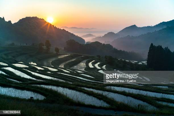 scenic view of terraced fields against sky during sunset - rice terrace stockfoto's en -beelden