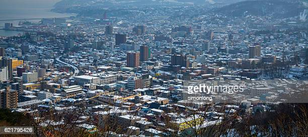 Scenic View of the city of Sapporo