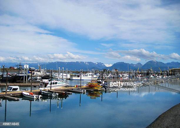 Scenic view of the fleet of boats in Alaska