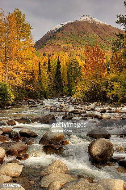 scenic view of the little susitna river at the entrance to hatcher pass during autumn in southcentral alaska, hdr image - mt. susitna stock pictures, royalty-free photos & images